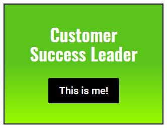Customer Success Leader